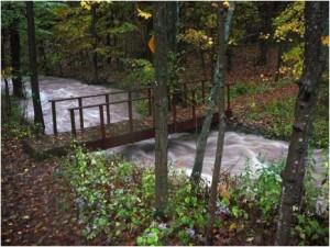 R'ville flood bridge
